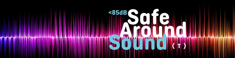 BTA Tinnitus Support Group Safe Around Sound
